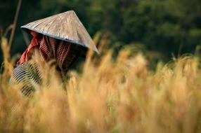Cambodia. © Marcos Osorio