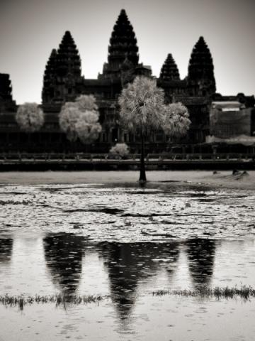 Angkor, 2010 © Toni Catany