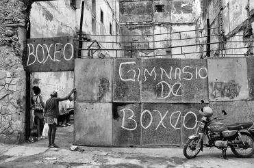 © Nino Loffredo