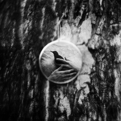 Revelation. © Dara Scully
