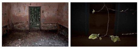 Díptico. Cuarto y planta. © Ludmila Albor